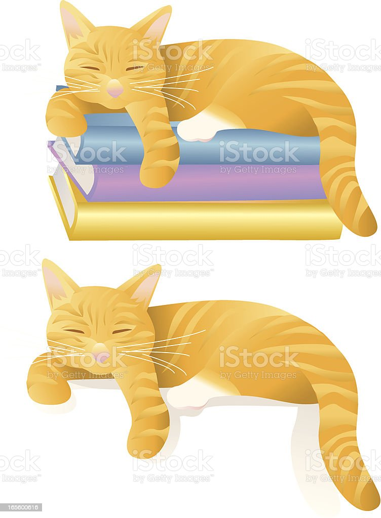 An illustration of two cats napping vector art illustration