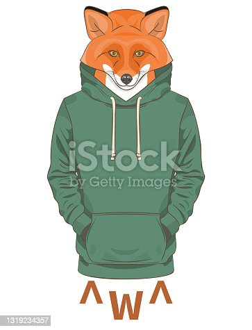 An orange fox in a green sweatshirt or hoodie
