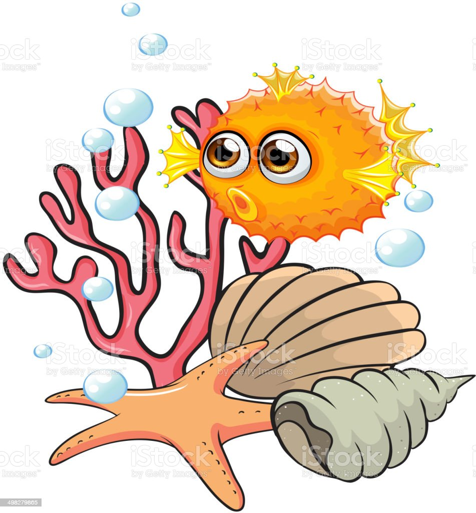 An orange puffer fish near the seashells vector art illustration