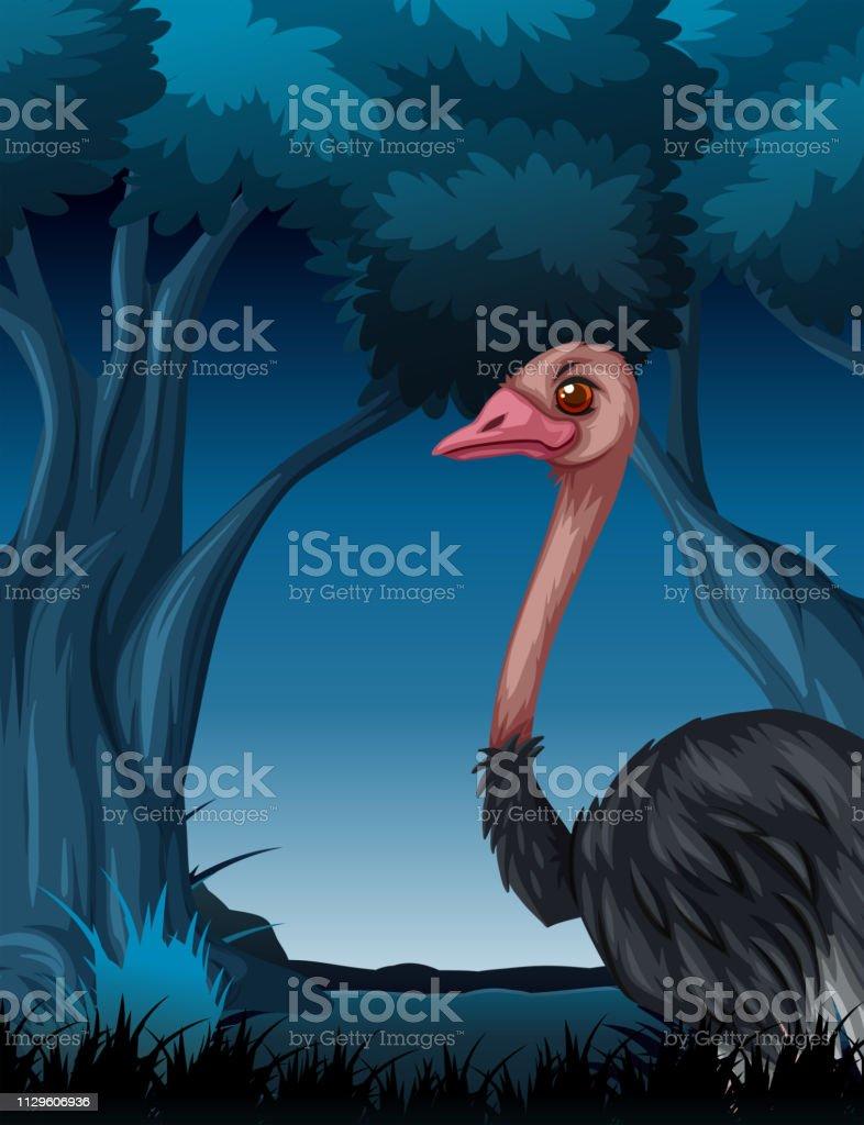 Um avestruz na floresta escura - ilustração de arte em vetor