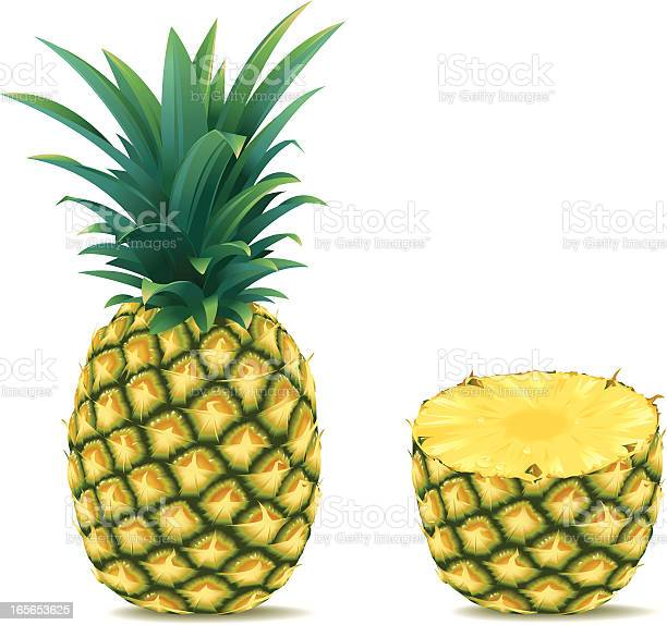 Free Ananas Vector Download Free Vectors Clipart Graphics