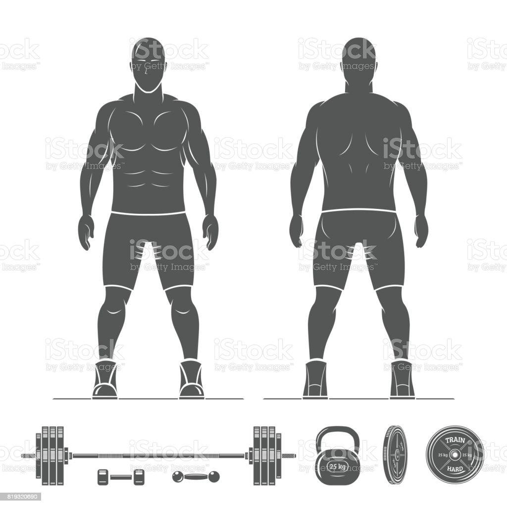 Ilustración de Anatomía Hombre Silueta Vista Desde El Frente Y Atrás ...