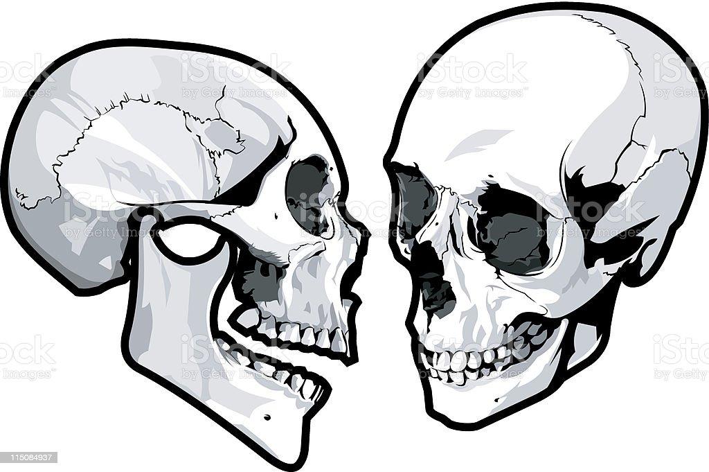 anatomy - gossiping skulls vector art illustration