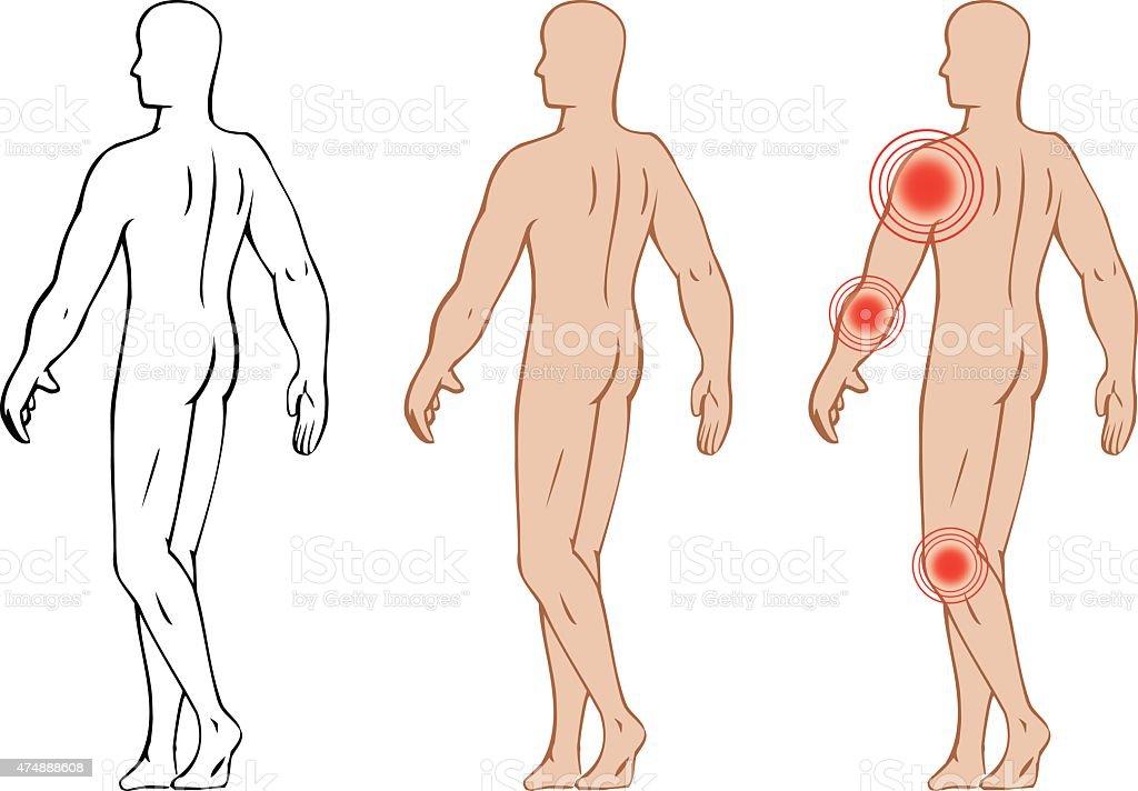Ilustración de Anatomía Del Cuerpo Humano Que Representan Los Puntos ...