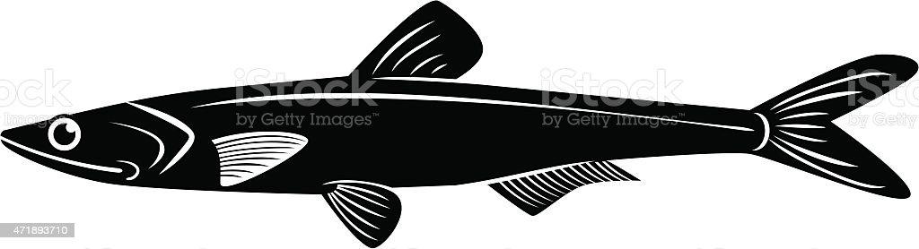 vector de anchoa - ilustración de arte vectorial