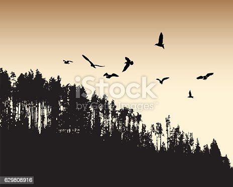 A vector silhouette illustration of a sepia toned forest with a flock of birds flying above.