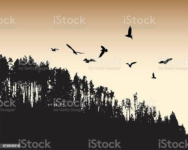 Ancient flight vector id629808916?b=1&k=6&m=629808916&s=612x612&h=uvbgawuqurwkihxtekwclmuqse i4kyt8qcb7dkljqw=