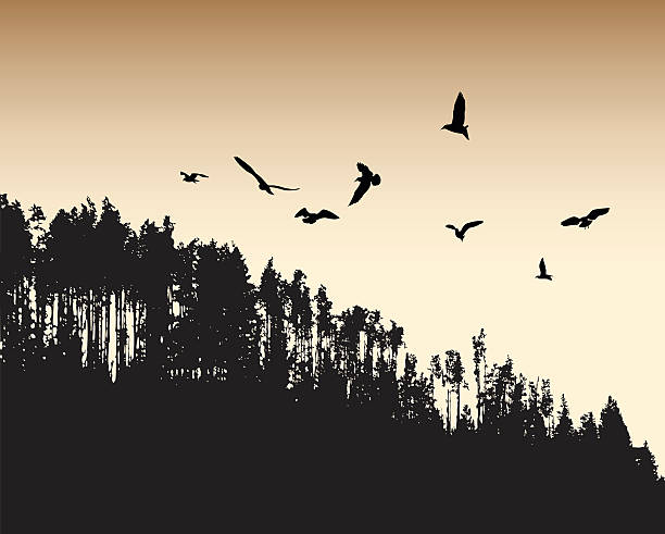 Ancient Flight A vector silhouette illustration of a sepia toned forest with a flock of birds flying above. bird silhouettes stock illustrations
