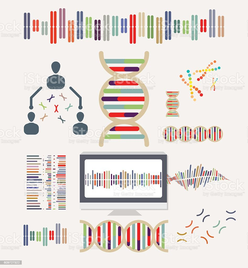 DNA and Chromosomes vector art illustration
