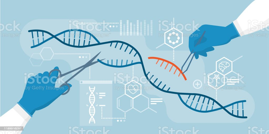 DNA and genome editing - Royalty-free Adjusting stock vector