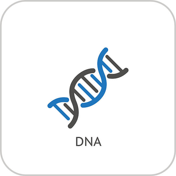 DNA and Medical Services Icon. Flat Design. DNA and Medical Services Icon. Flat Design. Isolated. genetic research stock illustrations