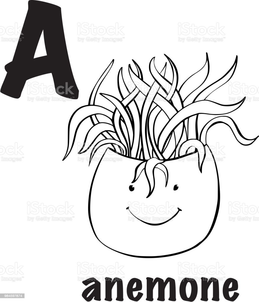 Anemone Coloring Page Stock Vector Art & More Images of Accidents ...