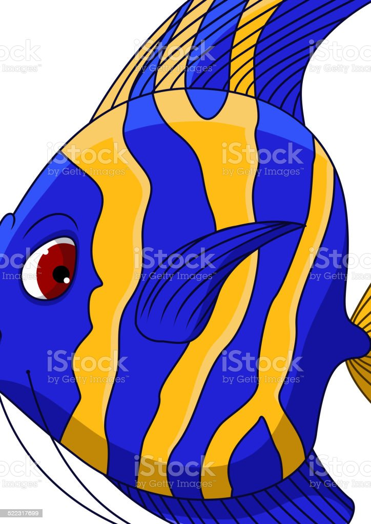 young angelfish clipart clipart vector design