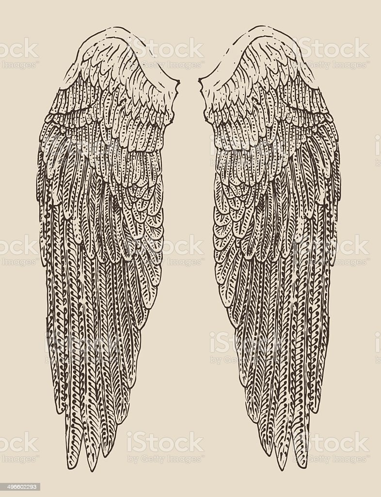 angel wings illustration, engraved style, hand drawn, sketch vector art illustration