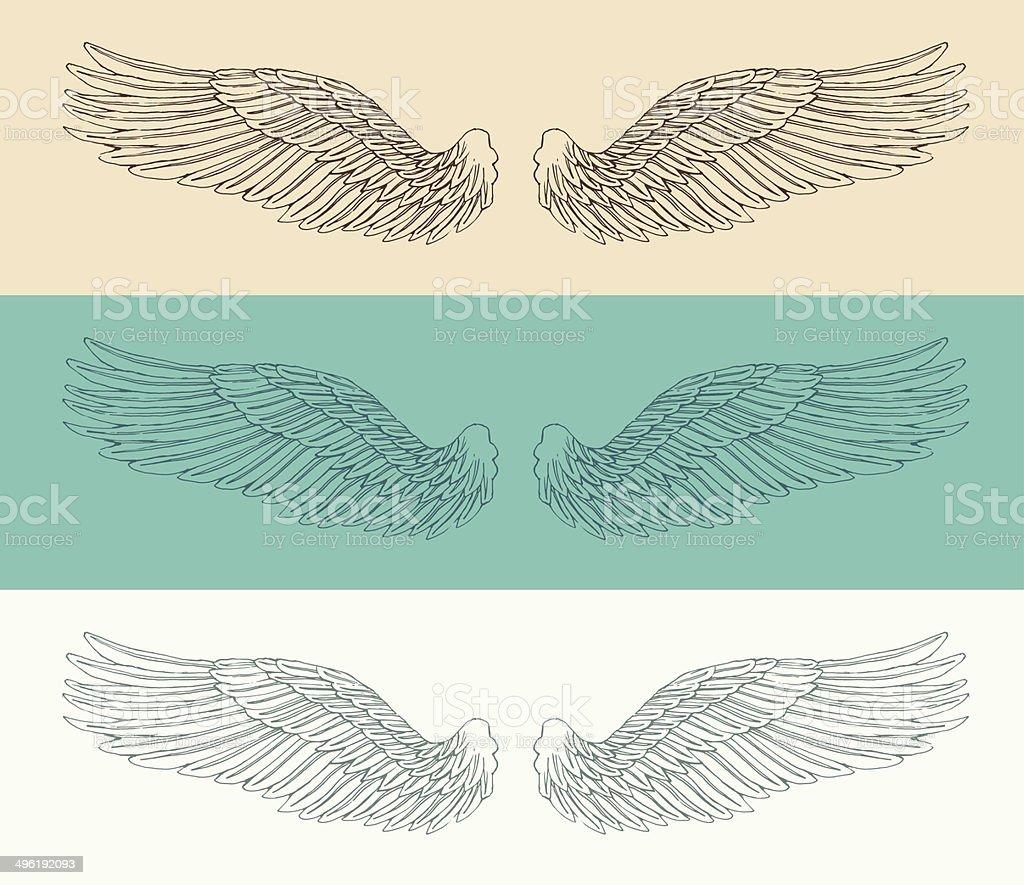 angel wings set  illustration, engraved style, hand drawn, sketch vector art illustration