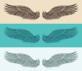 angel wings set illustration, engraved style, hand drawn, sketch