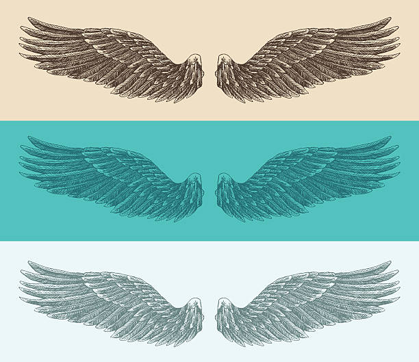 ilustraciones, imágenes clip art, dibujos animados e iconos de stock de ángel alas de ilustración, las marcas estilo de dibujo a mano, sketch - tatuajes de ángeles