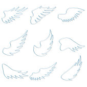 Angel wings. Set of angel wings isolated on white. Vector illustration. Vector.