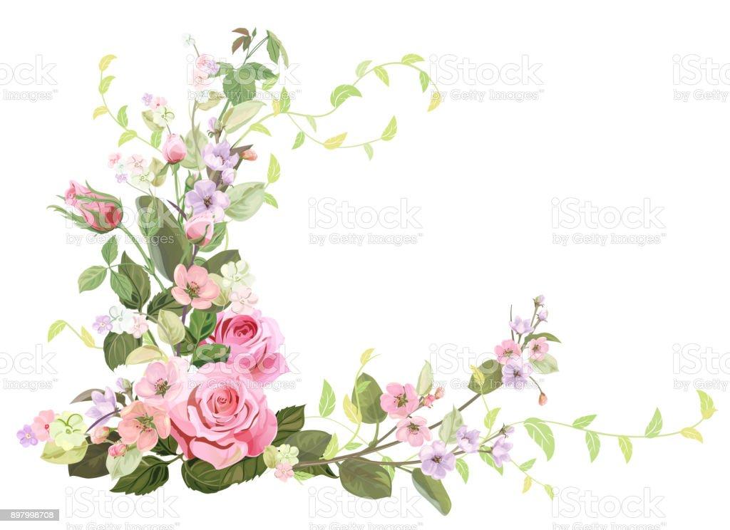 Ilustración de Marco Angular Con Rosas Flor De Primavera ...