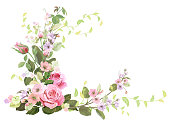 Angled frame with roses, spring blossom (bloom), branches with mauve, pink apple tree flowers, buds, green leaves on white background. Digital draw, illustration in watercolor style, vintage, vector