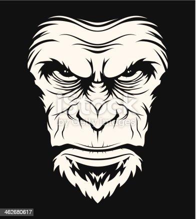istock Angry ape head 462680617