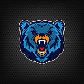 Angry bear head. Sport team mascot.