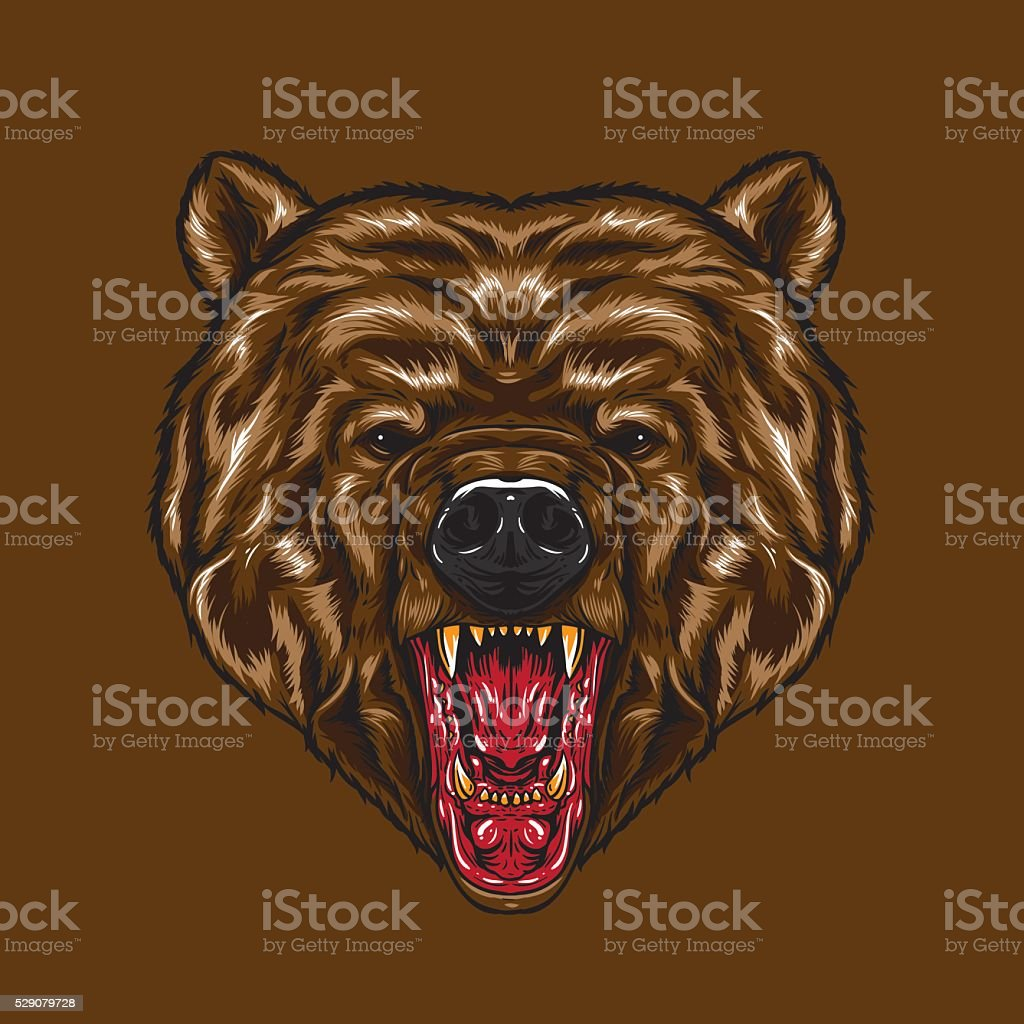 An angry Bear Face. Angry face expression showing canine.