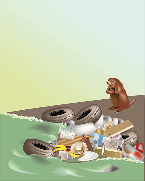 angry beaver - river paper stock illustrations, clip art, cartoons, & icons