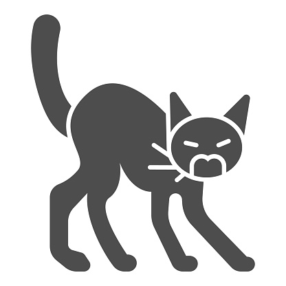 Angry black cat solid icon, halloween concept, hissing cat sign on white background, scared cat with arched back icon in glyph style for mobile concept and web design. Vector graphics.