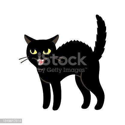 istock Angry black cat 1249612314