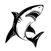 Angry black shark vector illustration isolated on white background. Perfect to use for printing on tshirts, mugs, caps, mascots or other advertising design