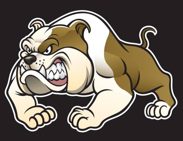bildbanksillustrationer, clip art samt tecknat material och ikoner med angry bulldog - bulldog