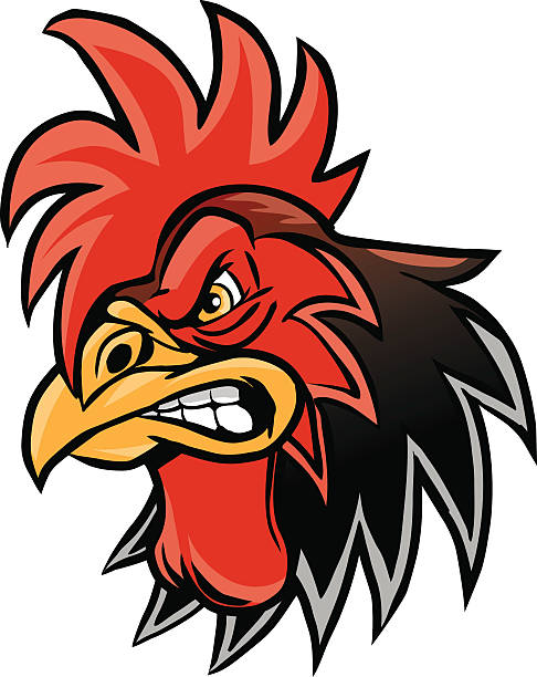 angry cartoon rooster mascot head illustration - rooster stock illustrations, clip art, cartoons, & icons