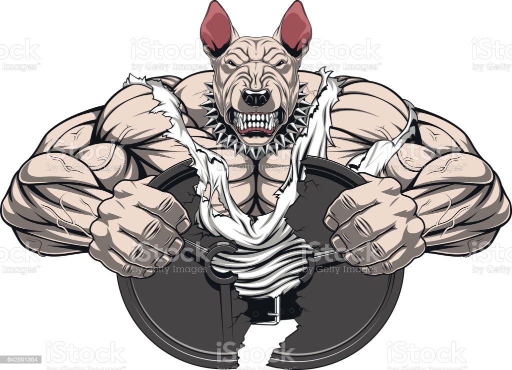 Angry dog bodybuilder vector art illustration