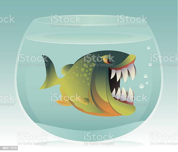 Angry Fish In Aquarium-vektorgrafik och fler bilder på Aggression