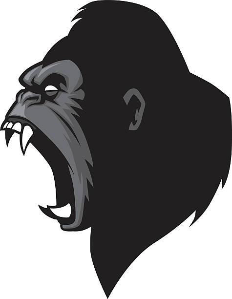 wütende-gorillakopf - gorilla stock-grafiken, -clipart, -cartoons und -symbole