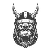 Angry gorilla in monochrome style in viking helmet. Vector illustration