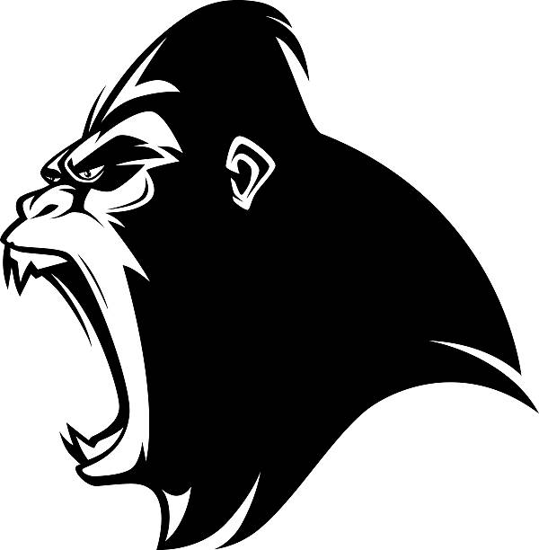 wütende gorilla - gorilla stock-grafiken, -clipart, -cartoons und -symbole