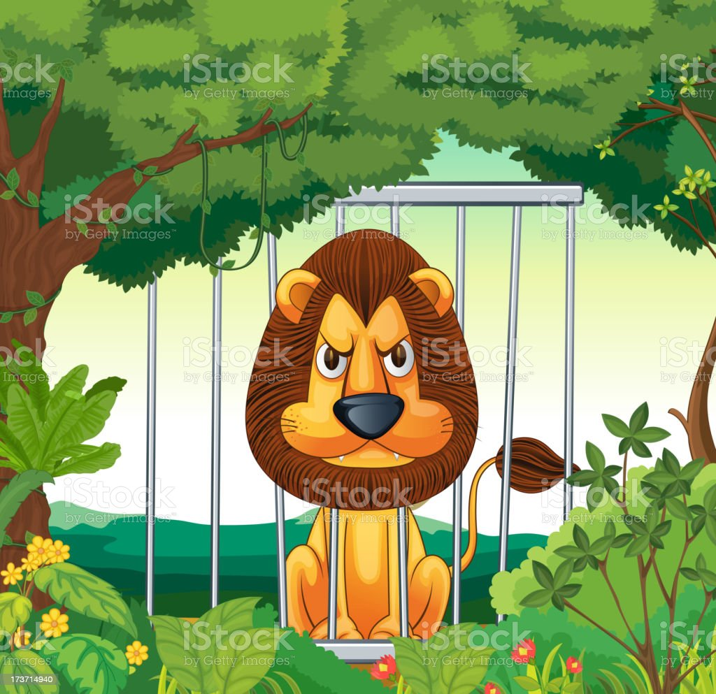 angry lion inside a cage royalty-free stock vector art