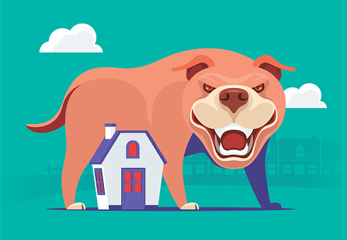 angry pit bull standing behind house