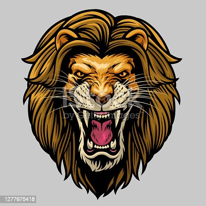 istock angry roaring male lion head 1277675418