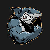 Angry shark logo template illustration in vector