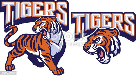 istock angry tiger mascot 855031590