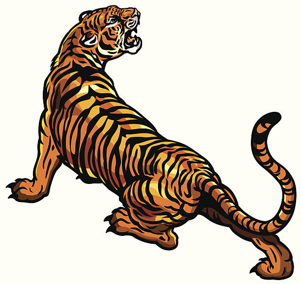 angry tiger - tiger stock illustrations, clip art, cartoons, & icons