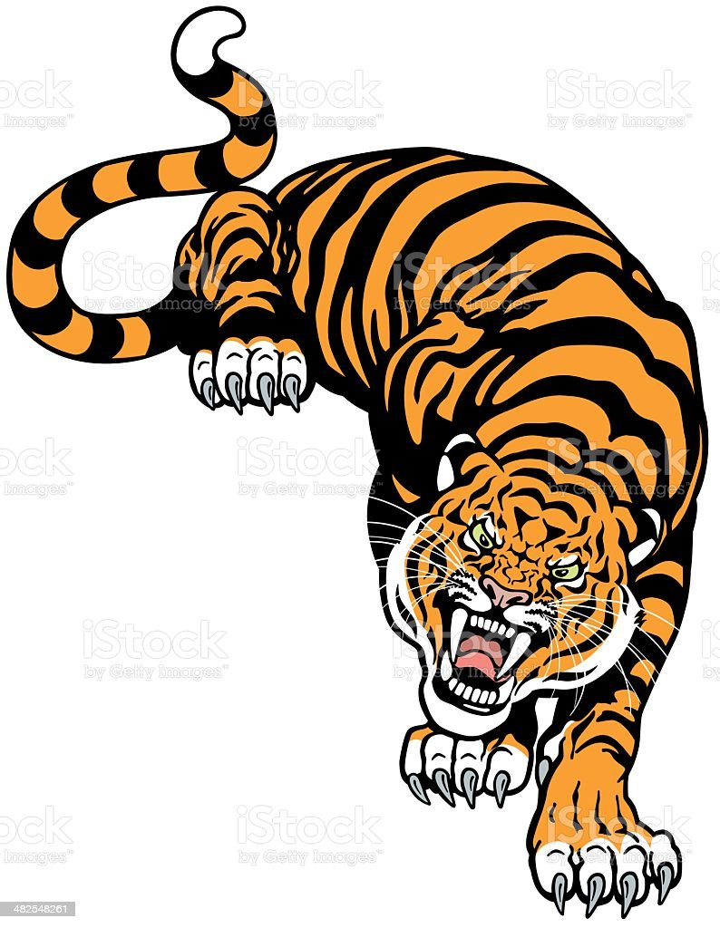 angry tiger vector art illustration