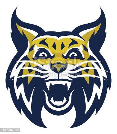 istock Angry wilcat mascot head 857267218