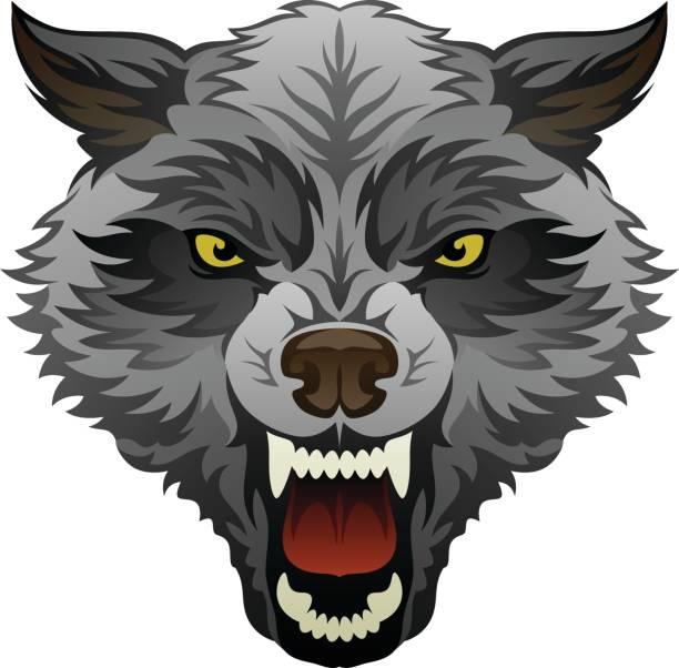 Best Werewolf Illustrations, Royalty-Free Vector Graphics ...