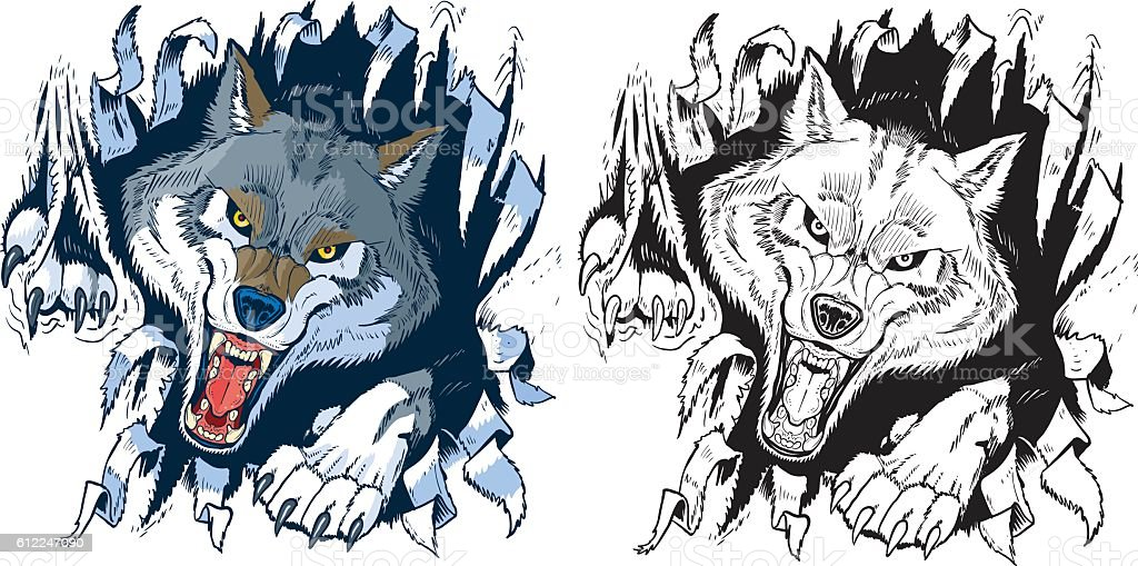 Angry Wolf Ripping out Background Vector Cartoon vector art illustration
