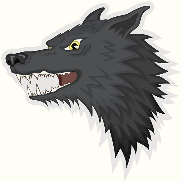 Best Wolf Teeth Illustrations, Royalty-Free Vector ...