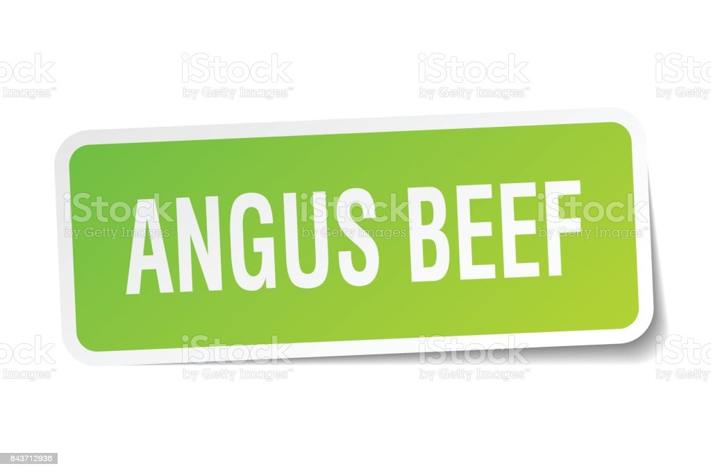 angus beef square sticker on white vector art illustration